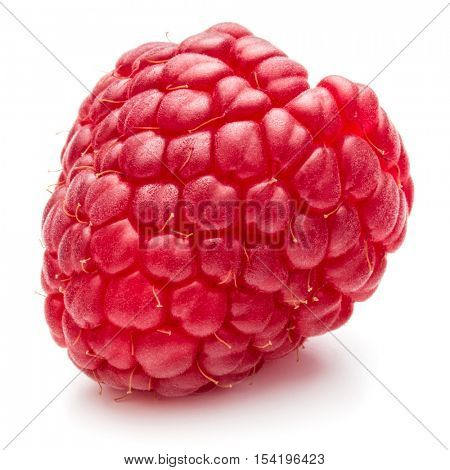 ripe raspberry isolated on white background close up
