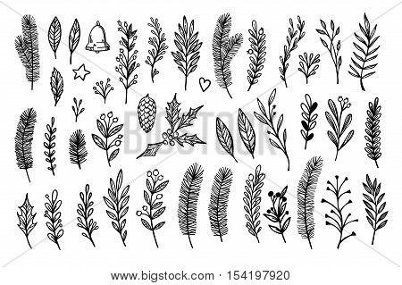 Hand Sketched Vector Vintage Elements ( Laurel, Frame, Leaf, Poinsettia, Holly, Fir Branches, Berry,