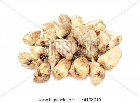 Pile Of Freesia Bulbs