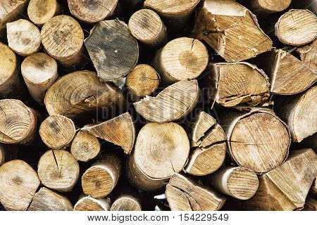 Background of wooden logs. Year rings. Wood industry. Deforestation theme. Woodpile scene.