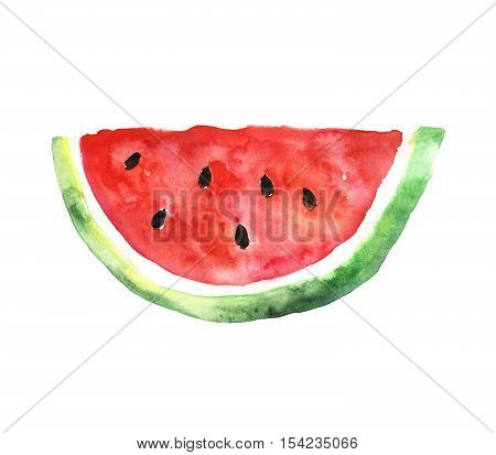 Watermelon slice. Colored illustration made with watercolors