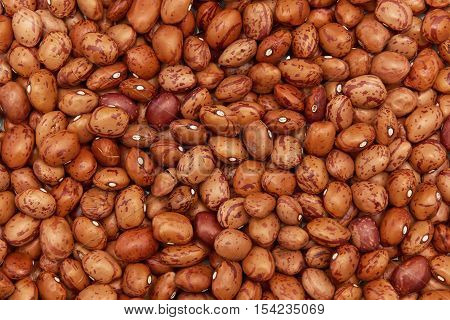 Closeup image of ecological pinto beans seen from above