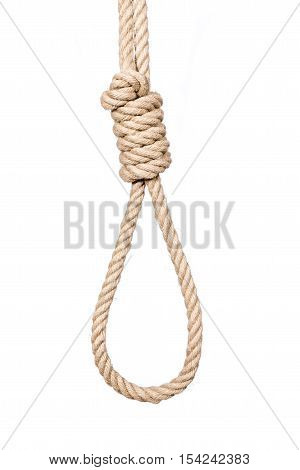 Bankrupt concept, rope noose with hangman's knot before hanging.