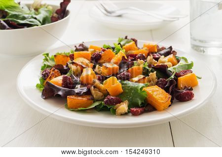 Autumn salad with roasted butternut squash cranberry and walnuts on white plate selective focus horizontal