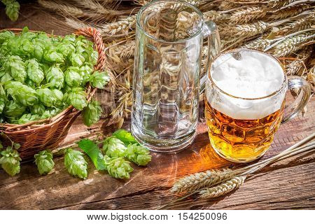 Freshly Harvested Hop Cones And Cold Beer
