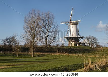 Old windmill in Veere standing in the polder under winter sunlight.