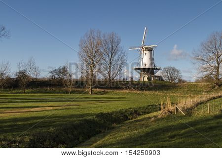 White windmill in Veere standing high above green grass in the winter sunlight.