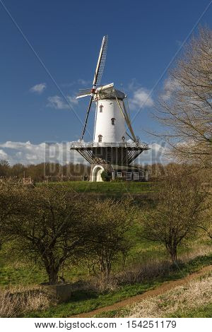 White windmill in Veere standing tall in the polder in the winter sunlight.