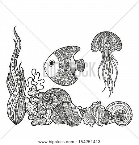 Vector illustration set of marine life fish shell snail algae and corral coloring for adults. Underwater life of a coloring book page black-and-white.
