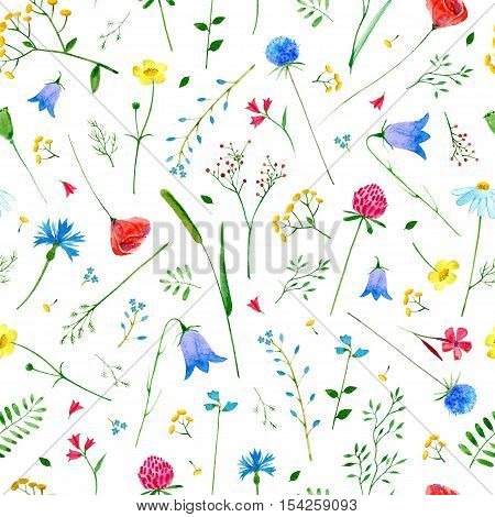 Floral seamless pattern with wild flowers and herbs on a white background. Buttercup,poppy,cornflower,bell,tansy,chamomile and berry. Watercolor hand drawn illustration.