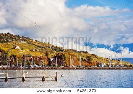 Autumn landscape of Lake Geneva with amazing clouds, Lavaux vineyards and Alps, Switzerland