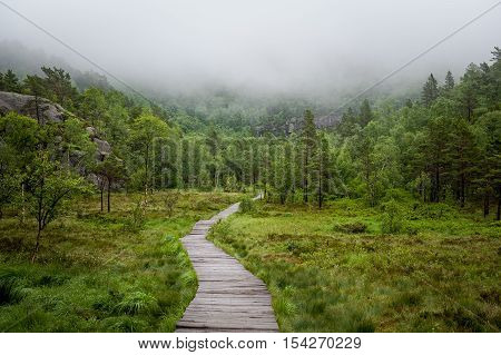 Hiking route to famous touristic attraction - Prekestolen rock. Wooden path and forest in fog. Lysefjord, Norway.