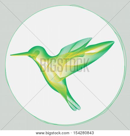 stylized illustration of small hummingbird flying to a flower