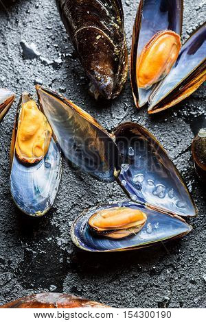 Freshly caught raw mussels on black rock