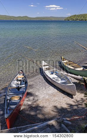 Canoes on a Remote Lakeshore on Shoshone Lake in Yellowstone National Park in Wyoming