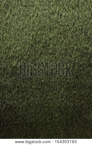 Natural yellow fur texture background close up.