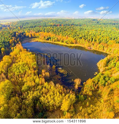 Aerial view of Trout lake. Colorful autumn in National park Sumava. Great destination for deer hunting and trout fishing. Natural paradise from above. Czech Republic, Central Europe.