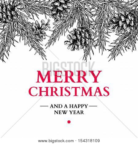 Christmas holiday greeting card with fir tree and pine cone. Vector hand drawn botanical illustration . Engraved xmas square poster or banner