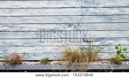 Abstract background old damaged painted white wood