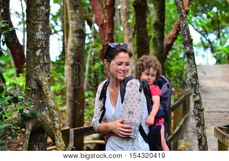 Mother and child travels in Daintree National Park in the tropical north of Queensland Australia