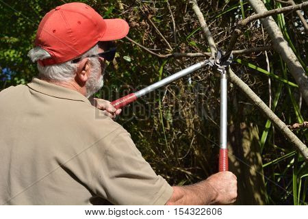 Man Use A Tree Pruner