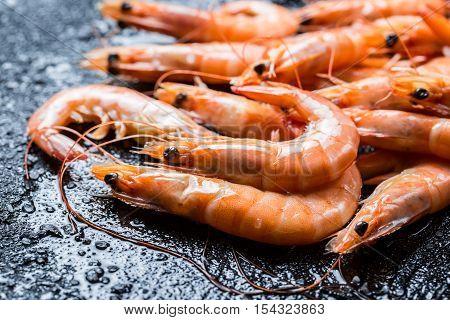Closeup of freshly caught shrimp on black rock