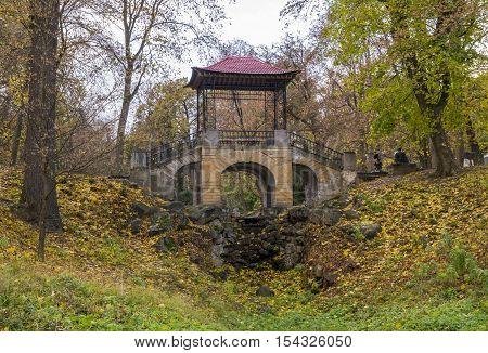 Bridge near the lake in the park in autumn season