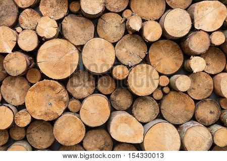 Background of wood logs, wood stack. In different shape and color