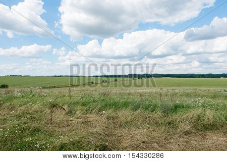 grass field with blue sky, nature background