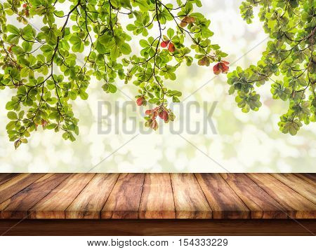 Empty of wood table with green leaves on abstract bokeh natrue background