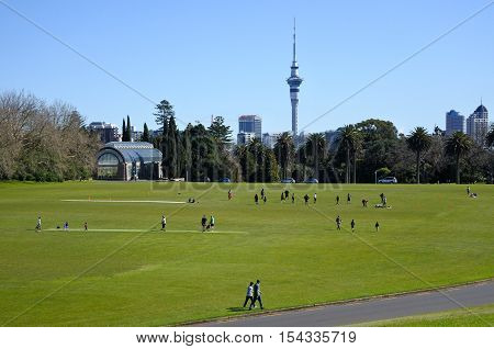 Landscape of Auckland Domain in Auckland New Zealand It's Auckland's oldest park and one of the largest in the city.