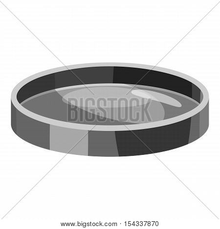Filter lens icon. Gray monochrome illustration of filter lens vector icon for web