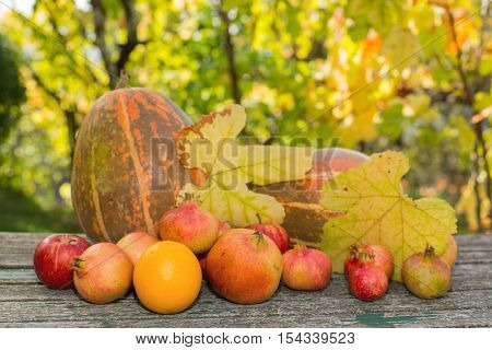 autumn fruits set on a wooden table, outdoor
