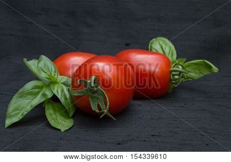 Three Ripe Roma Tomatoes with Two Sprigs of Fresh Basil on Black Background