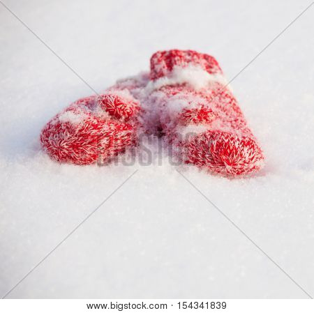 Mittens in snow. Red knitted gloves in winter