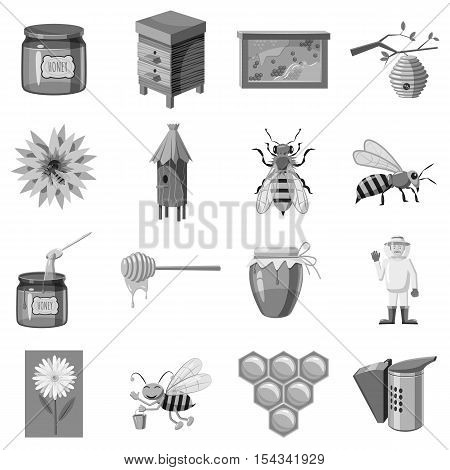 Apiary icons set. Gray monochrome illustration of 16 apiary vector icons for web