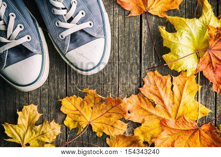 Shoes and autumn leaves. Top view.