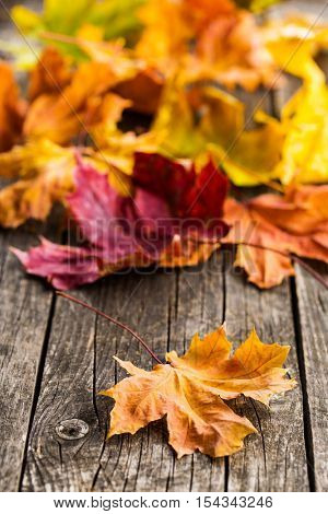 Colorful autumn leaves on old wooden table.