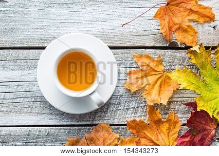 Cup of tea with autumn leaves. Top view.