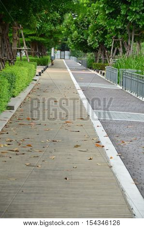 Brick and wooden walkway to the trees