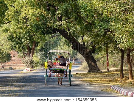Horse Cart On Road In Bagan