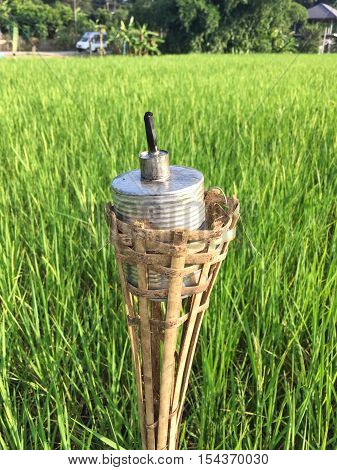 vertical photo of old rust kerosene lamp on the background of green rice field