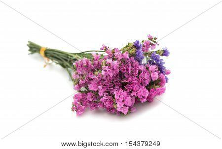 statice flower summer bouquet on white background