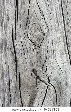 Abstract textures of cracking and aging wooden railway sleepers showing distinct wood grain.