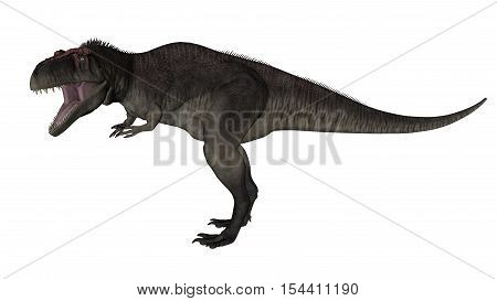 Tyrannotitan roaring isolated in white background - 3D render