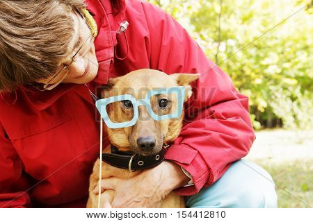 Old, smiling woman holding paper glasses on stick close to dog's muzzle. Dog in funny, fake glasses with owner in park.
