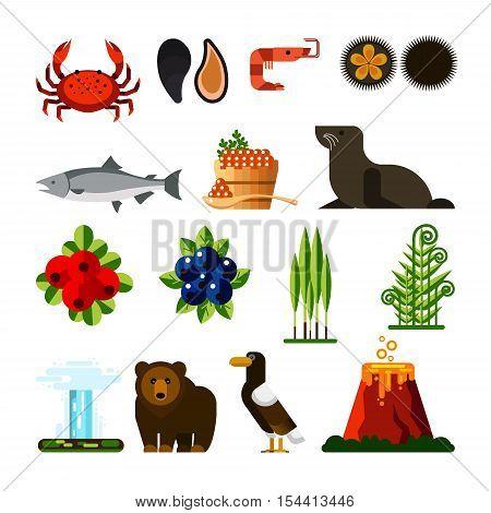Set of Kamchatka Peninsula icons: crab, mussel, shrimp, sea urchin, fish, caviar, seal, cowberry, blueberry, ramson, fern geyser bear eagle volcano