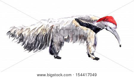 Cute character new year anteater in red santa's hat. Watercolor christmas animal