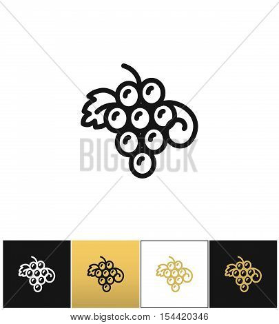 Hanging grapes or vine grape with leaves vector icon. Hanging grapes or vine grape with leaves pictograph on black, white and gold backgrounds