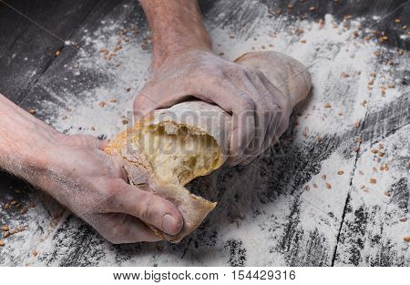 Breaking fresh bread. Baking and cooking concept background. Hands tearing apart loaf on rustic wooden table sprinkled with flour. Stained dirty hands of cook. Soft toning